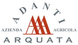 adanti logo