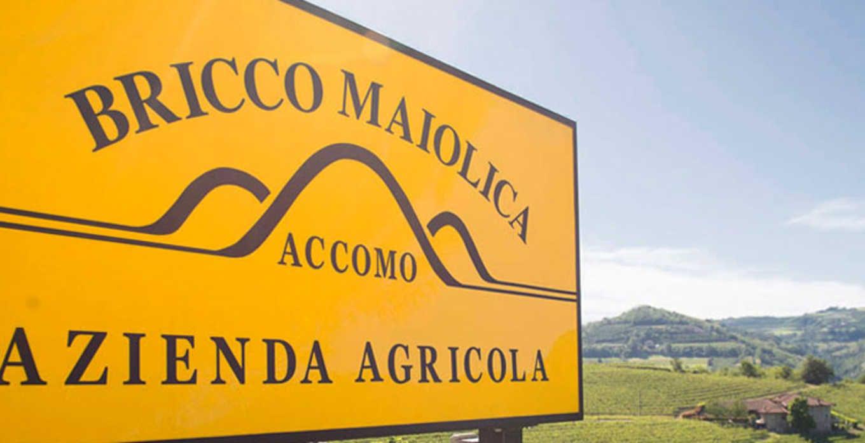 Bricco Maiolica - bricco-maiolica_gallery_003