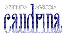 azienda agricola caudrina logo