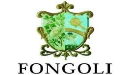 fongoli logo