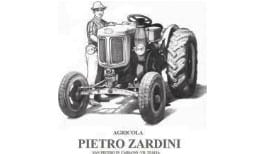 pietro zardini logo