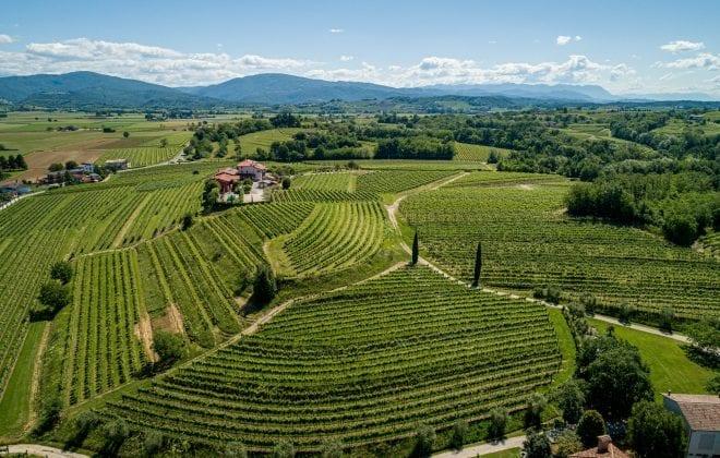 strada del vino colli orientali