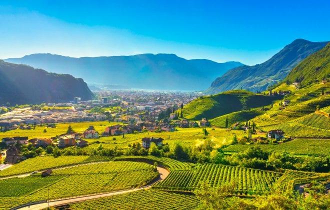 strada del vino italia